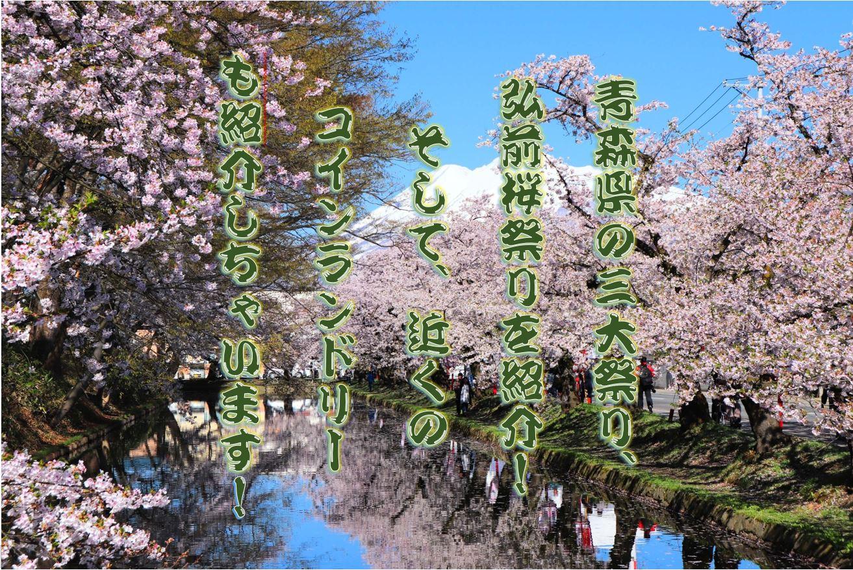 弘前の桜祭りと近くのコインランドリー